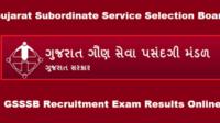 Gujarat Gaun Seva Pasandgi Mandal (GSSSB) Work Assistant