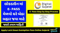 How to get pass in and out of Gujarat