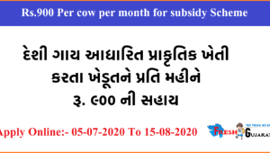 Rs.900 Per cow per month